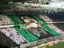(2014-15) Borussia Mönchengladbach - Cologne