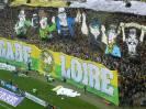 (2013-14) Nantes - Rennes_6