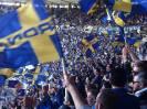 (2013-14) Hellas Verona - Fiorentina